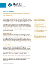 Hayes Security Services Overview